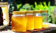 三七粉加蜂蜜能一起喝吗?
